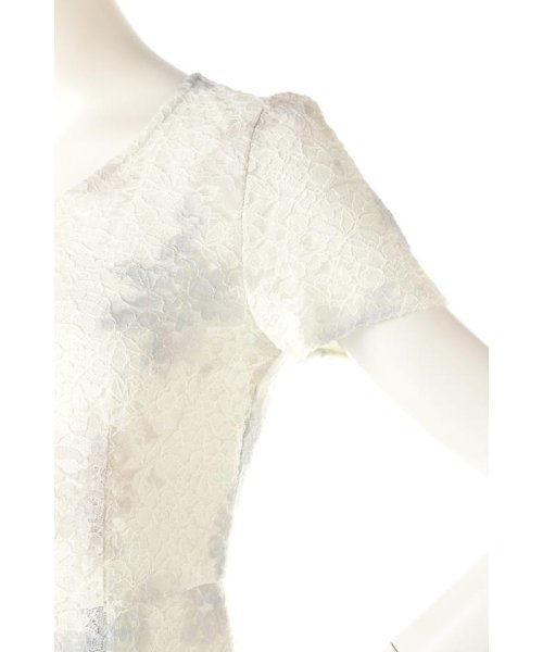 PROPORTION BODY DRESSING(プロポーション ボディドレッシング)/ぼかしフラワーレースワンピース/1217140105_img09