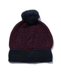 TOMMY HILFIGER WOMEN/H HAT/001676103