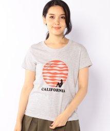 coen/CALIFORNIA Tシャツ/001925244