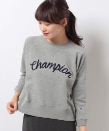 E hyphen world gallery/Champion ロゴプルオーバー/500128299