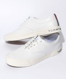 TOMMY HILFIGER MENS/レザー スニーカー/500093682