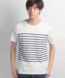 JNSJNM/【BLUE STANDARD】ペンギンプリントTシャツ/500194083