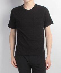 Alpine DESIGN/アルパインデザイン/メンズ/胸ポケットTシャツ ジャガード/500240642