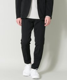 URBAN RESEARCH/WORK STYLE PANTS/500242479