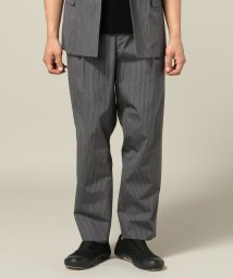 Journal Standard TRISECT/GRAY NAVY / グレイネイビー : 60/2 STRIPE TACK TROUSER/500248867