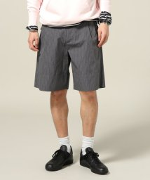 Journal Standard TRISECT/GRAY NAVY / グレイネイビー : WIDE SHORTS/500248868