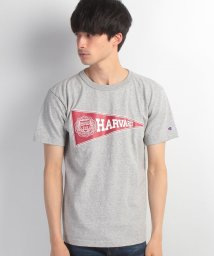 Champion/T1011 US T‐SHIRT/500128855