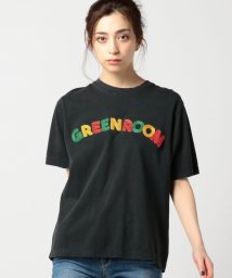 ROSE BUD/(ROSE BUD)GREEN ROOMロゴ刺繍半袖Tシャツ/500290966
