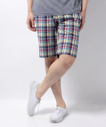 HILFIGER DENIM/JPN CHECK SHORT/500281131