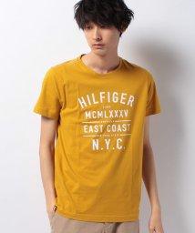 TOMMY HILFIGER MENS/コットンジャージクルーネックTシャツ/500289640