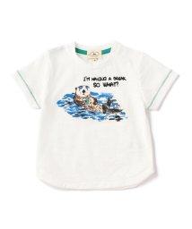 green label relaxing (Kids)/【BABY】ラッコプリント Tシャツ ショートスリーブ/500310671