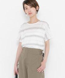 SENSE OF PLACE/シルケットボーダーTシャツ(半袖)/500324904