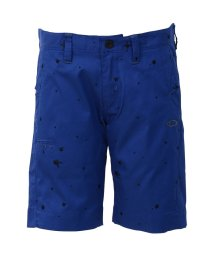SHIMANO/オークリー/メンズ/SKULL SPRAY EMBROIDERY SHORTS/500333149