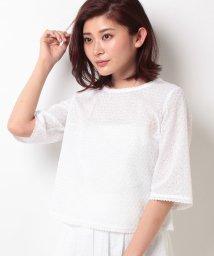 ELISA/【セットアップ対応商品】コットンローンレースブラウス/10254314N