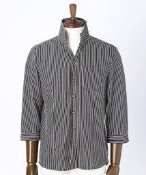 HIDEAWAYS NICOLE/ストライプ柄7分袖シャツ/500336535