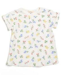 Seraph / F.O.KIDS MART/ロールアップ半袖Tシャツ/500337029