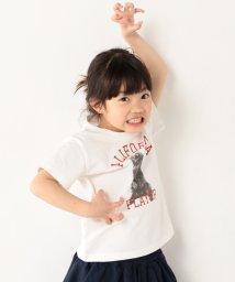 coen/【coen キッズ / ジュニア】PARKIES(パーキーズ)クマフォトプリントTシャツ(100~150cm)/500358364