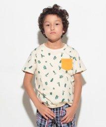 KOE/サボテンプリント半袖Tシャツ/500362959