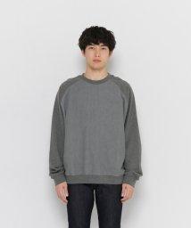 URBAN RESEARCH/【SENSEOFPLACE】デニムブロックドスウェットシャツ/500381362