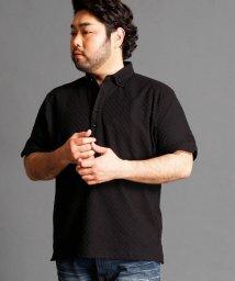 HIDEAWAYS NICOLE L/市松柄ボタンダウンポロシャツ/500444364