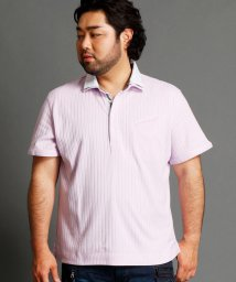 HIDEAWAYS NICOLE L/針抜シルケットスムース2枚襟ポロシャツ/500448038