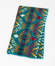 URBAN RESEARCH Sonny Label/PENDLETON OVERSIZED JACQUARD TOWELS/500466504