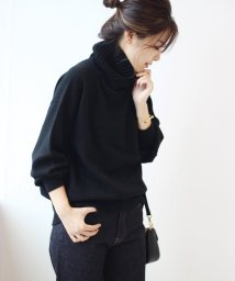 Spick & Span/≪予約≫カシミヤウール タートルプルオーバー◆/500509696
