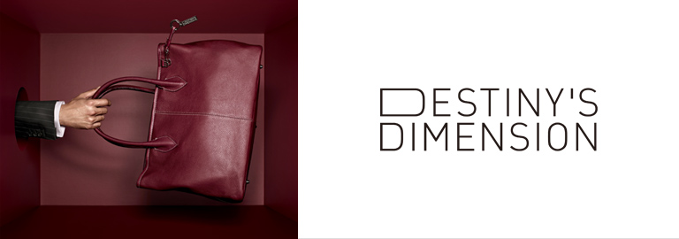 DESTINY'S DIMENSION (デスティニーズディメンション)