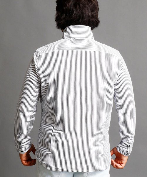 HIDEAWAYS NICOLE L(ハイダウェイニコル(大きいサイズ))/ストライプカットシャツ/7404-9930_img01