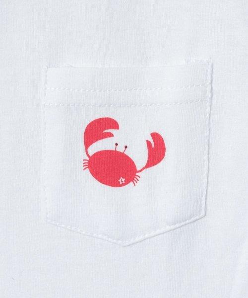 LAGOM(ラーゴム)/マリンプリントポケットTシャツ/1206388221411_img04