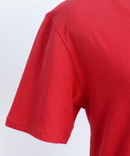 ANDJ(ANDJ(アンドジェイ))/UVカット加工VネックポケットコットンTシャツ/ts75x03923_img19