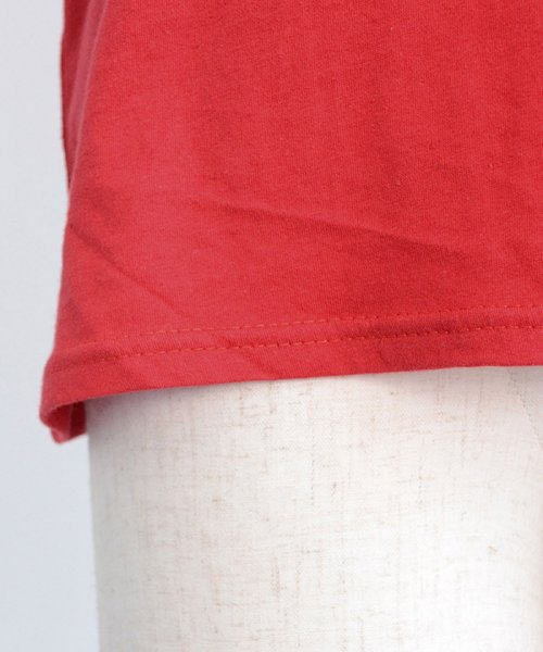 ANDJ(ANDJ(アンドジェイ))/UVカット加工VネックポケットコットンTシャツ/ts75x03923_img20