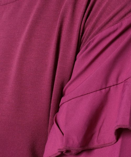 Eimy Peal by POWDER SUGAR(エイミーパール バイ パウダーシュガー)/袖フリルカットソー/3K22972_img05