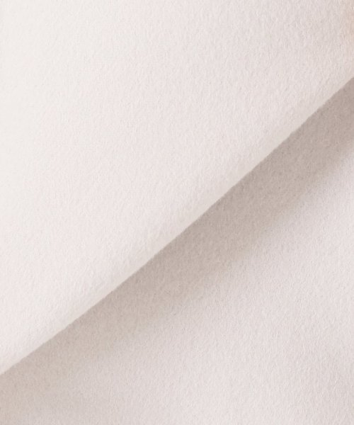 Spick & Span(スピック&スパン)/Wフェイススタンドノーカラーコート◆/18020200595030_img16