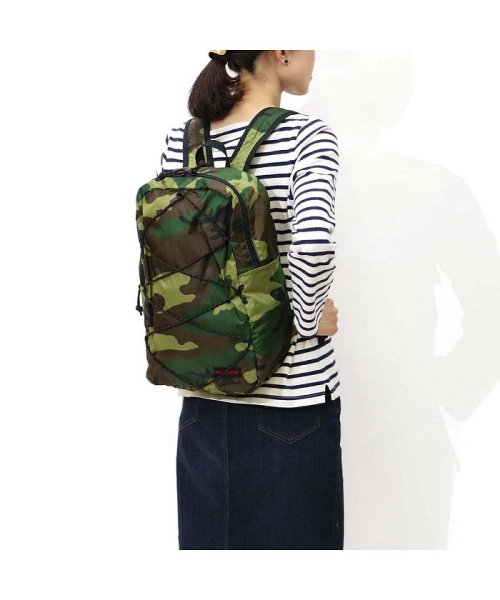 64f74e05f2cf BRIEFING(ブリーフィング)/ブリーフィング リュックサック BRIEFING バックパック パッカブルハイカー PACKABLE HIKER  BRF428219