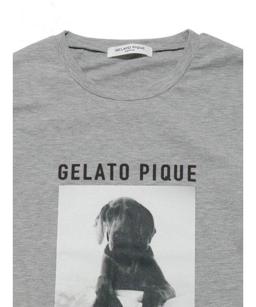 GELATO PIQUE HOMME(GELATO PIQUE HOMME)/【GELATO PIQUE HOMME】アニマルワンポイントプルオーバー/PMCT185974_img03