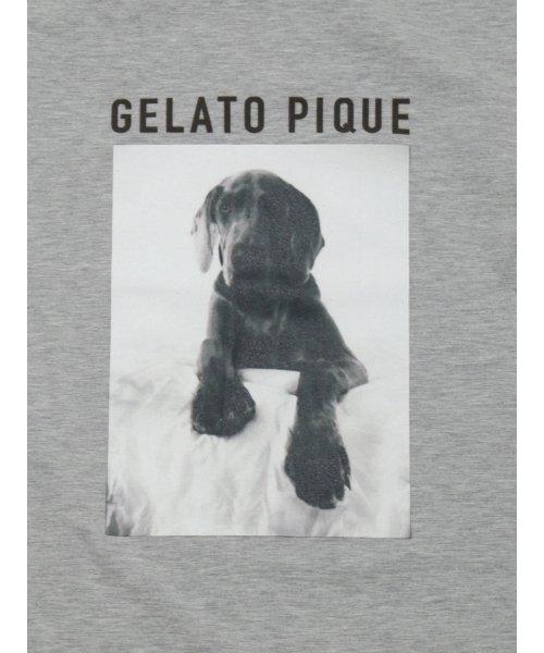 GELATO PIQUE HOMME(GELATO PIQUE HOMME)/【GELATO PIQUE HOMME】アニマルワンポイントプルオーバー/PMCT185974_img04