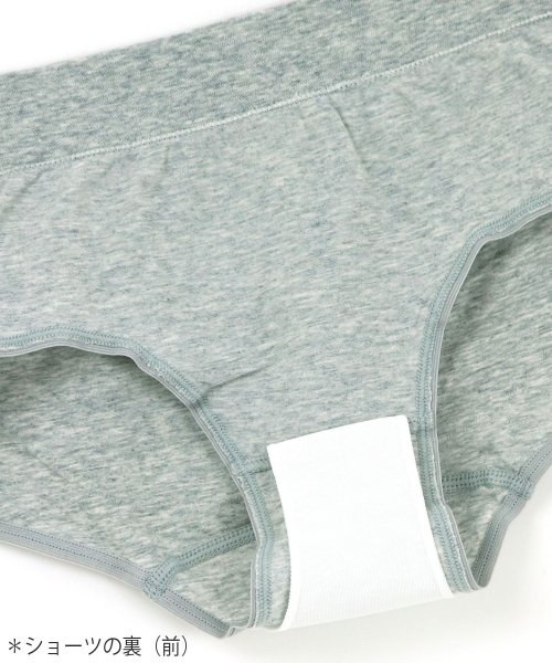 fran de lingerie(フランデランジェリー)/Flat Fit Sanitary Shorts フラットフィットサニタリー レギュラーウィング対応/sa-ff001_img02