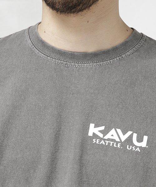 nano・universe(ナノ・ユニバース)/KAVU:別注FRUIT OF THE LOOM ピグメントTシャツ/6709124067_img02