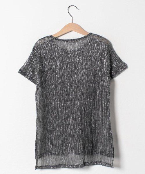 SISLEY YOUNG(シスレーヤング)/シルバーラメ半袖Tシャツ・カットソー/19P3Y8HC144R_img01