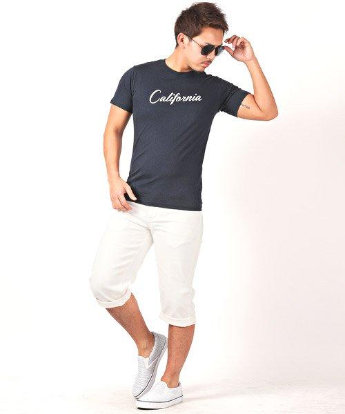 LUXSTYLE(ラグスタイル)/Californiaロゴプリント半袖Tシャツ/pm-8180_img04