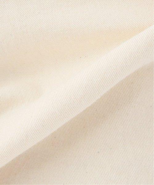 JOURNAL STANDARD(ジャーナルスタンダード)/【STAN RAY/スタンレイ】 ペインターパンツ/19030410003710_img18