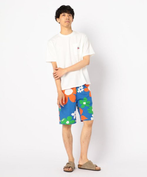 GLOSTER(GLOSTER)/【Jams/ジャムス】SHORTS/9-0689-2-59-003_img10