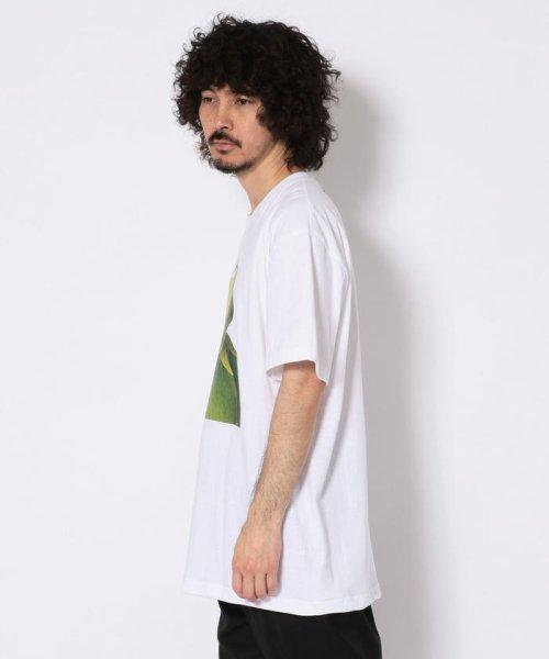 LHP(エルエイチピー)/WHITELAND/ホワイトランド/NEW KERMIT Tシャツ/605919102-60_img01