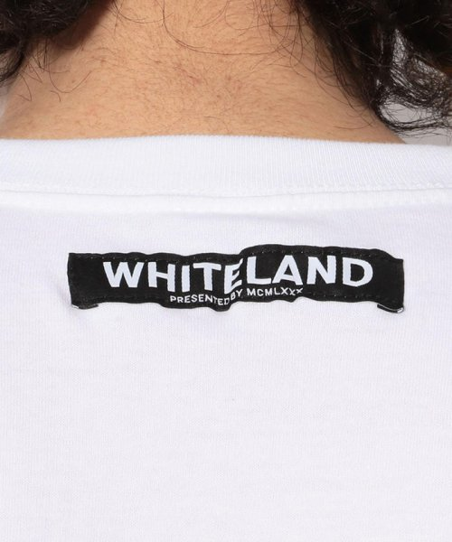 LHP(エルエイチピー)/WHITELAND/ホワイトランド/NEW KERMIT Tシャツ/605919102-60_img04