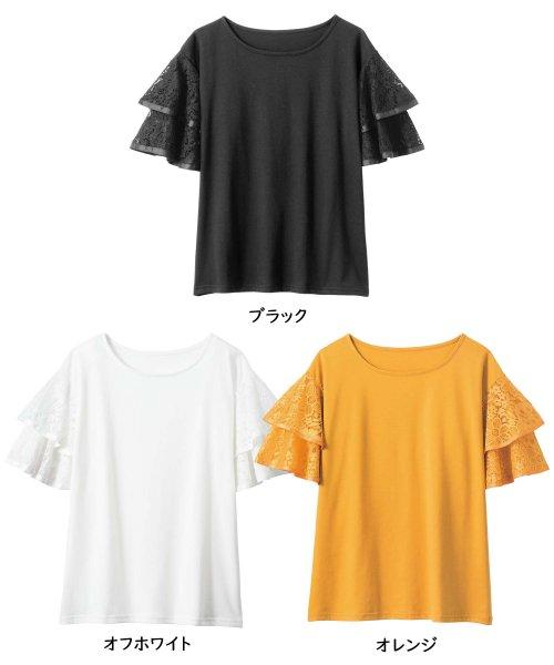 GeeRa(ジーラ)/袖レースフレアートップス          /204632_img01