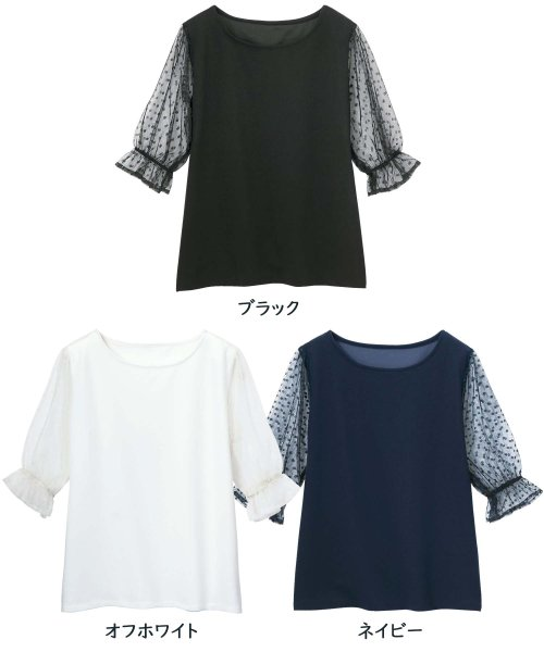 GeeRa(ジーラ)/袖ドットチュール切替トップス        /204621_img01