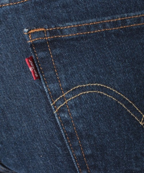 LEVI'S LADY(リーバイス レディース)/RIBCAGE STRAIGHT ANKLE LIFE'S WORK/726930002_img06