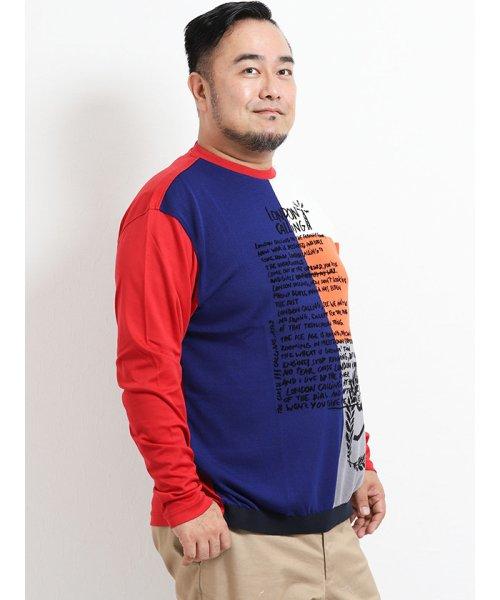 GRAND-BACK(グランバック)/【大きいサイズ】カステルバジャック/CASTELBAJAC スイスコットン ニット切替クルーネック長袖Tシャツ/110204863520923_img04