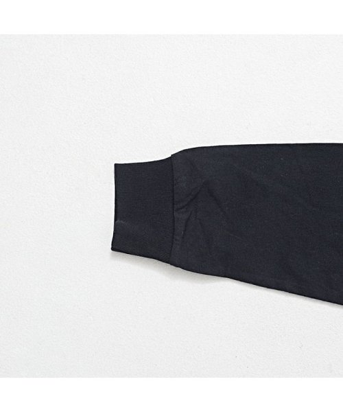 CavariA(キャバリア)/CavariA【キャバリア】USAコットン刺繍入り袖プリント クルーネック 長袖 Tシャツ/CASB20-05_img12